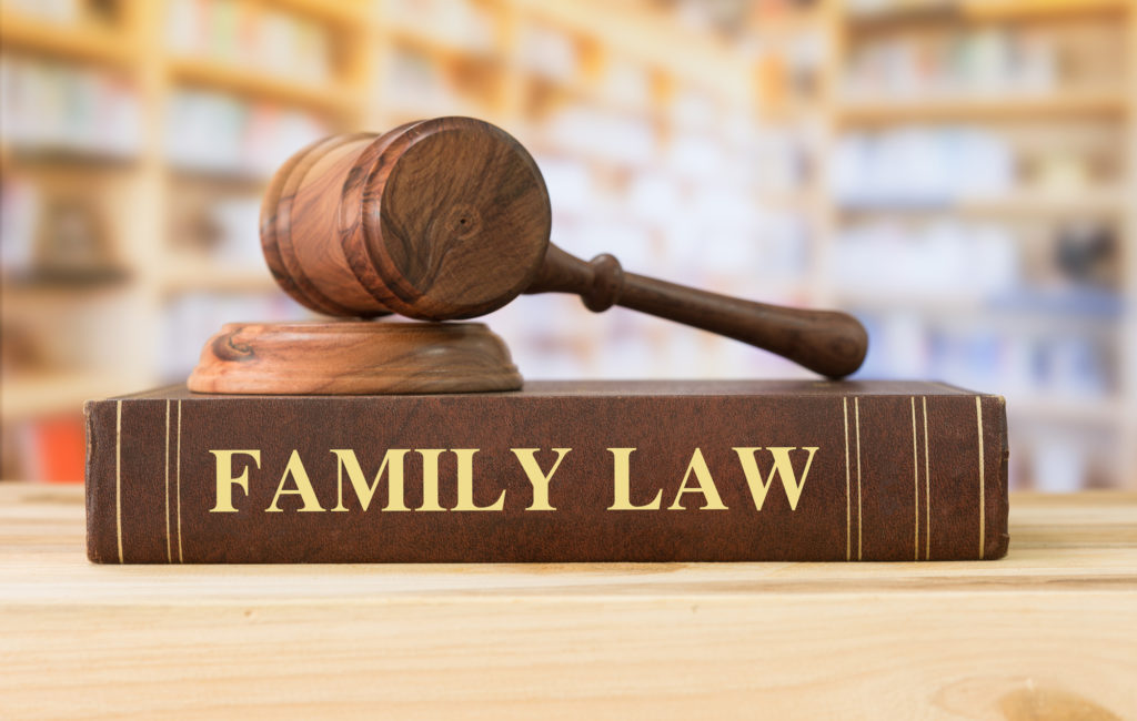Roles Of A Professional Family Law Attorney